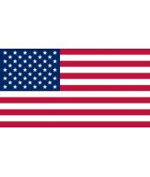 BANDIERA USA 20X40 MM